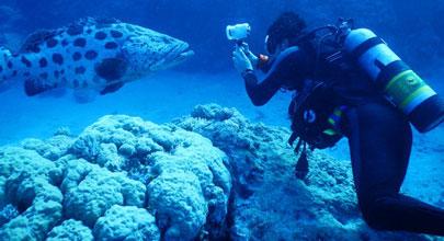Водонепроницаемая на глубине до 30м